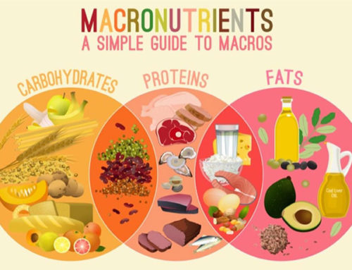 Macronutrients – A Balanced Diet